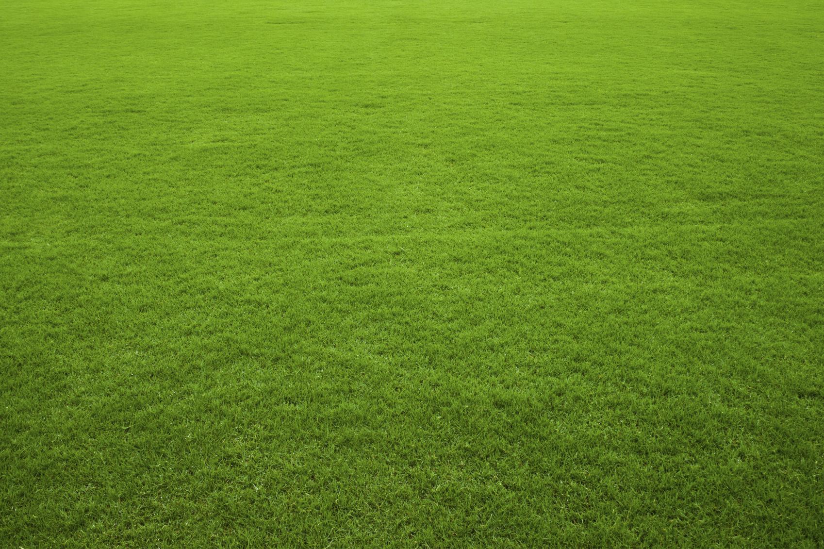 Apex Lawn Services